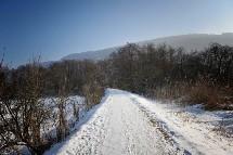 Großansicht Winterwandern in Kärnten