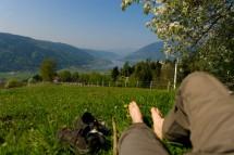 Großansicht Frühling am Ossiacher See