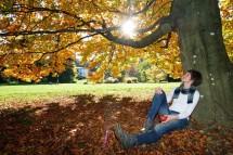 Großansicht Herbsturlaub in Kärnten