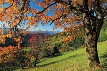 Großansicht Herbst am Ossiacher See